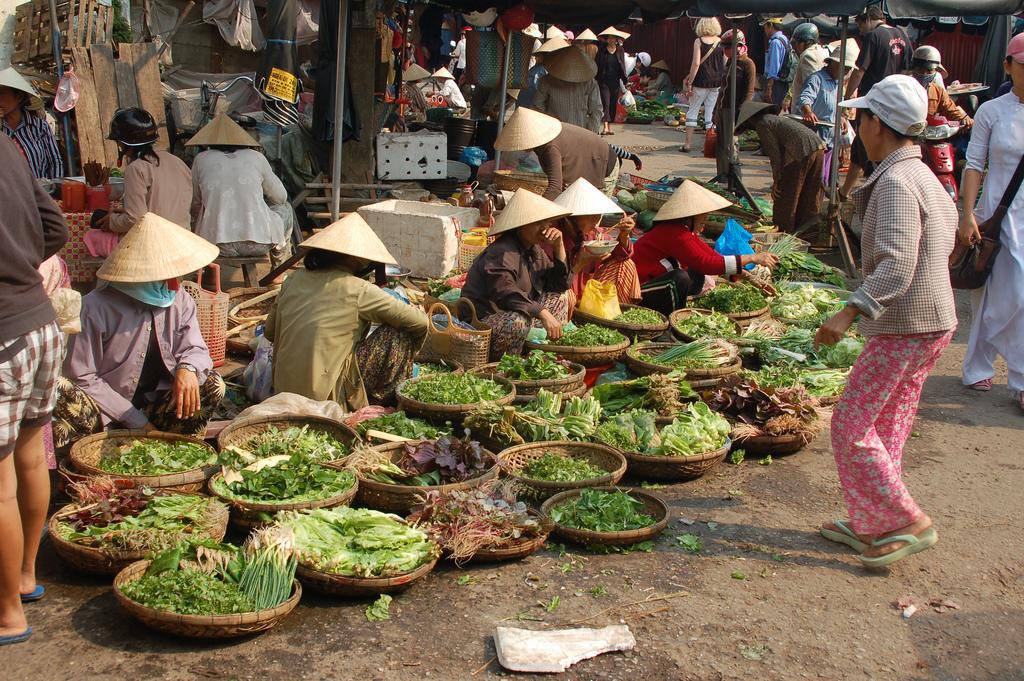 هزینه سفر به ویتنام