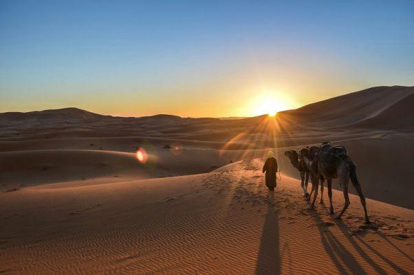 سفر به مراکش با تور
