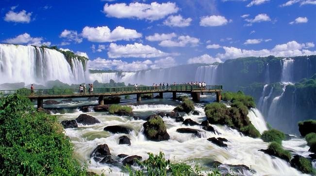 محیط زیست استثنایی برزیل